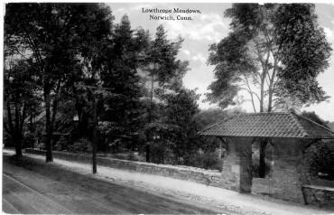 Stop 9 - Lowthorpe Meadows 2